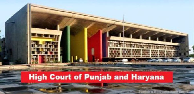 Live-in relationships not prohibited; such persons are entitled to equal protection of laws: Punjab & Haryana High Court