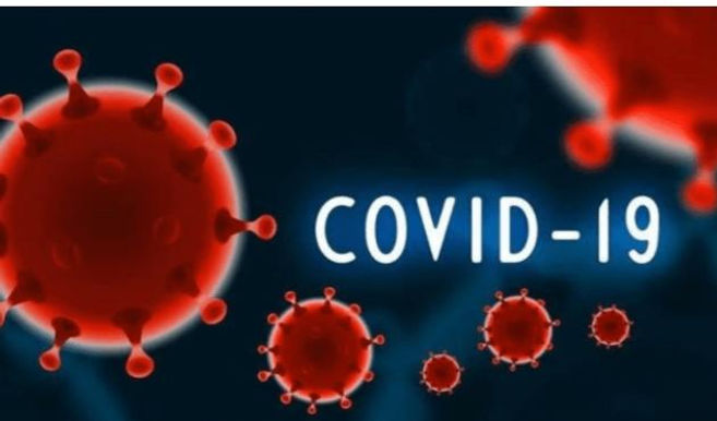 Delhi has witnessed the highest single - day spike in COVID-19 cases