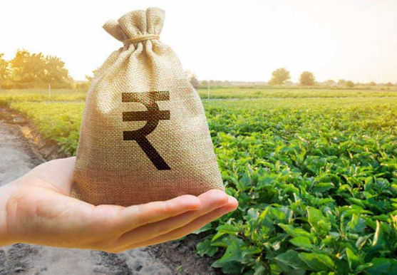 """""""Indian agritech firms to create value pool of $30-$35 billion by 2025: Bain & Company"""""""