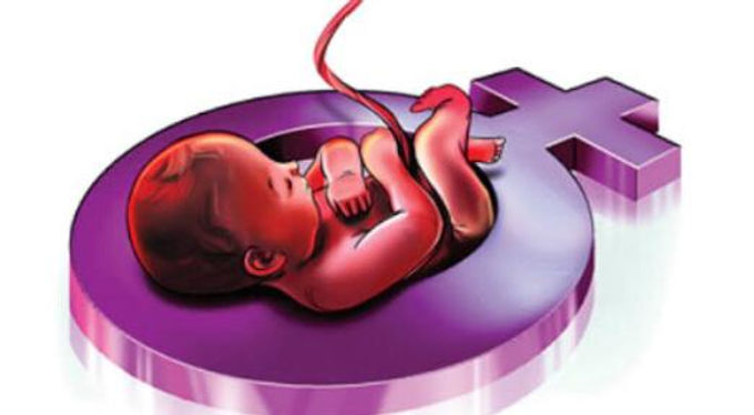 Termination of female foeticide is destruction of woman of future : Punjab and Haryana high court