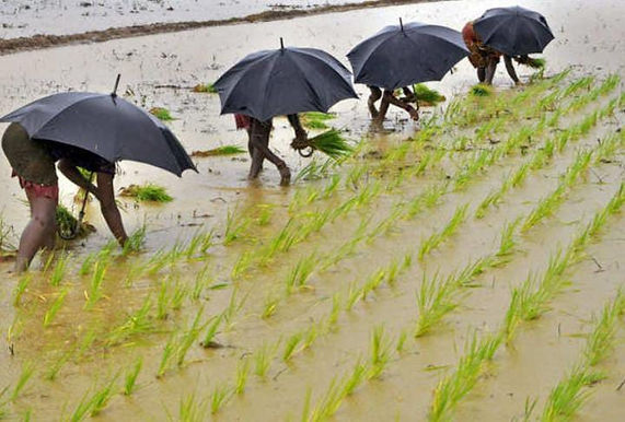 Monsoon covers two-third of India earlier than usual, to accelerate crop sowing