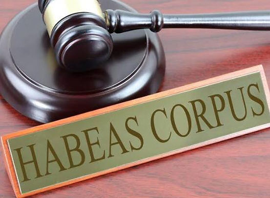 Writ Of Habeas Corpus Not Maintainable Against Judicial Order Of Magistrate /CWC Sending Minor Victim To Children Protection Homes:Allahabad High Court