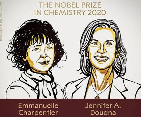 Noble Prize 2020 in Chemistry awarded to two scientists for work in genome editing.