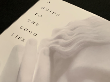 A guide to the good life by Wiliam B. Irvine - 1 minute read