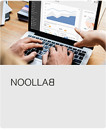 noollab.png