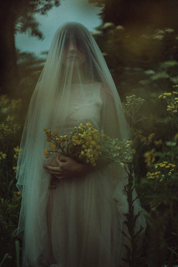 elnath-wedding-dress-pink