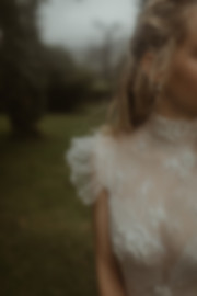 amaranth-wedding-dress-bridal-gown
