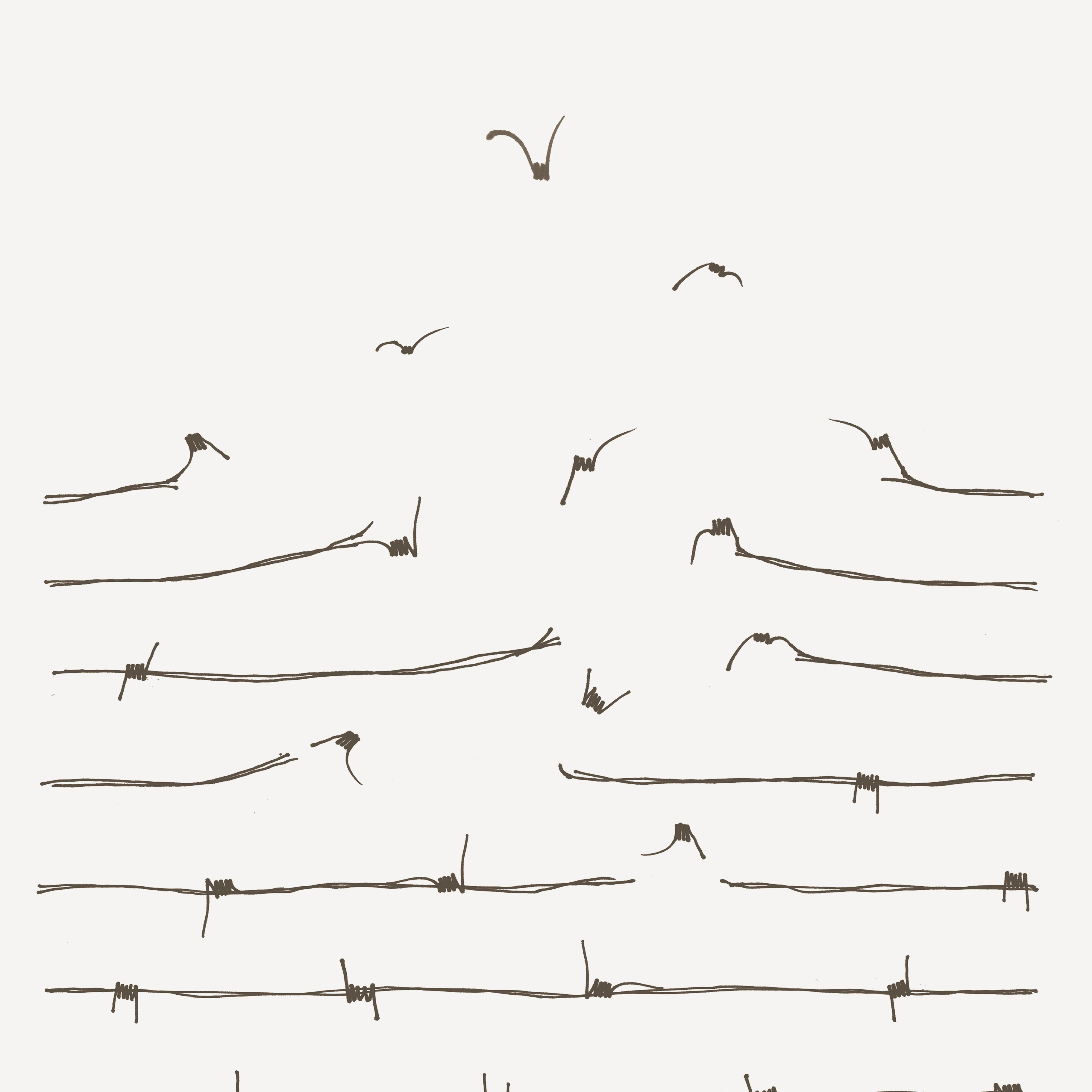 shutterstock_fence birds.jpg