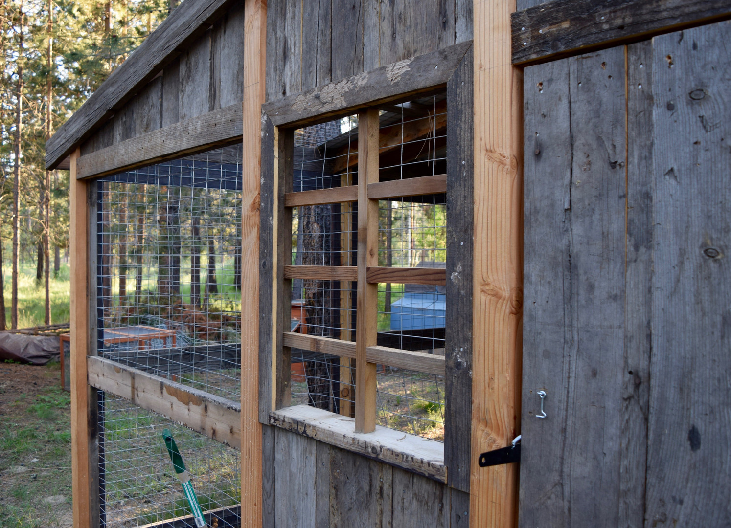 Chicken Coop Window