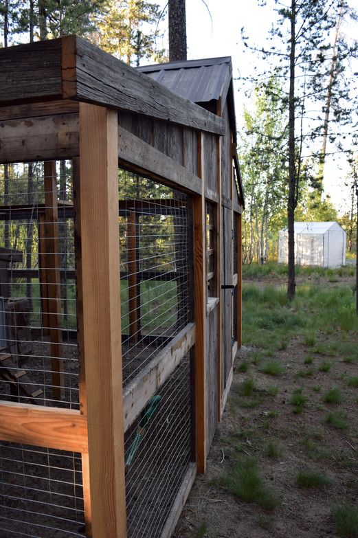 Hen House Side View