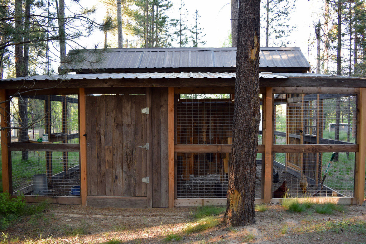 Full Exterior side view of the chicken coop