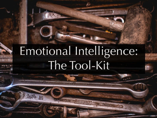 Emotional Intelligence for Men as a Tool-Kit: Online Life Coaching