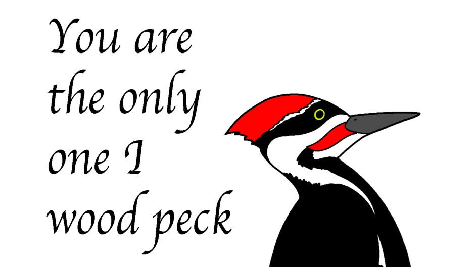 You are the only one I wood peck!