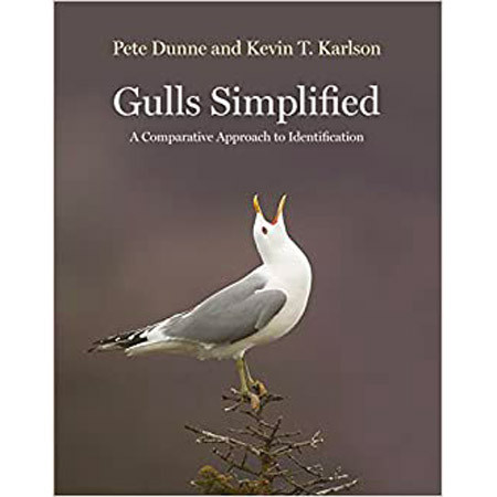 Gull Simplified