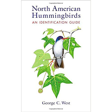Our favorite field guide to hummingbirds - North American Hummingbirds: An Identification Guide