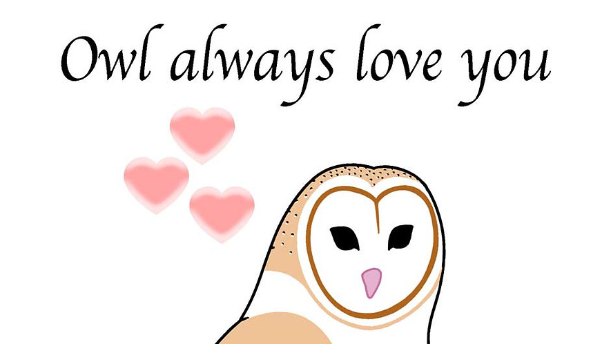 Valentine's Day Card - Barn Owl