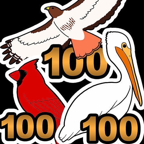 Birding Stickers - 100's