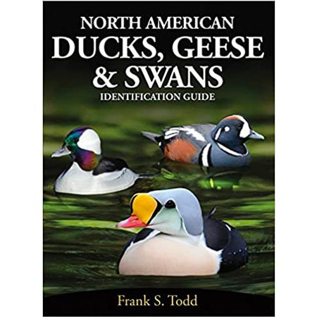North American Ducks, Geese & Swans Identification Guide
