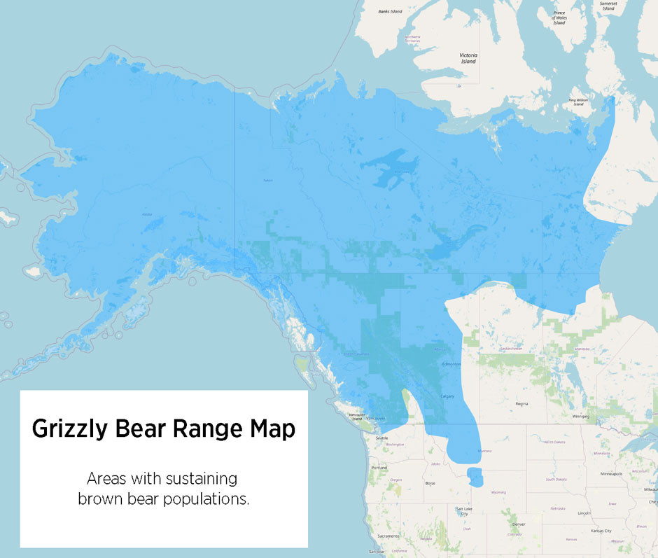 Grizzly Bear Range Map / Brown Bear Range Map