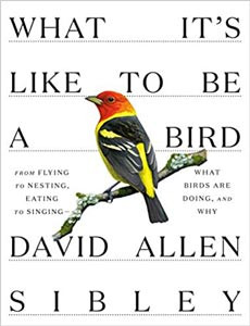 """Learn more about bird behavior with """"What It's Like to be a Bird"""""""
