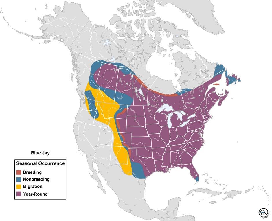 Updated Blue Jay Range Map