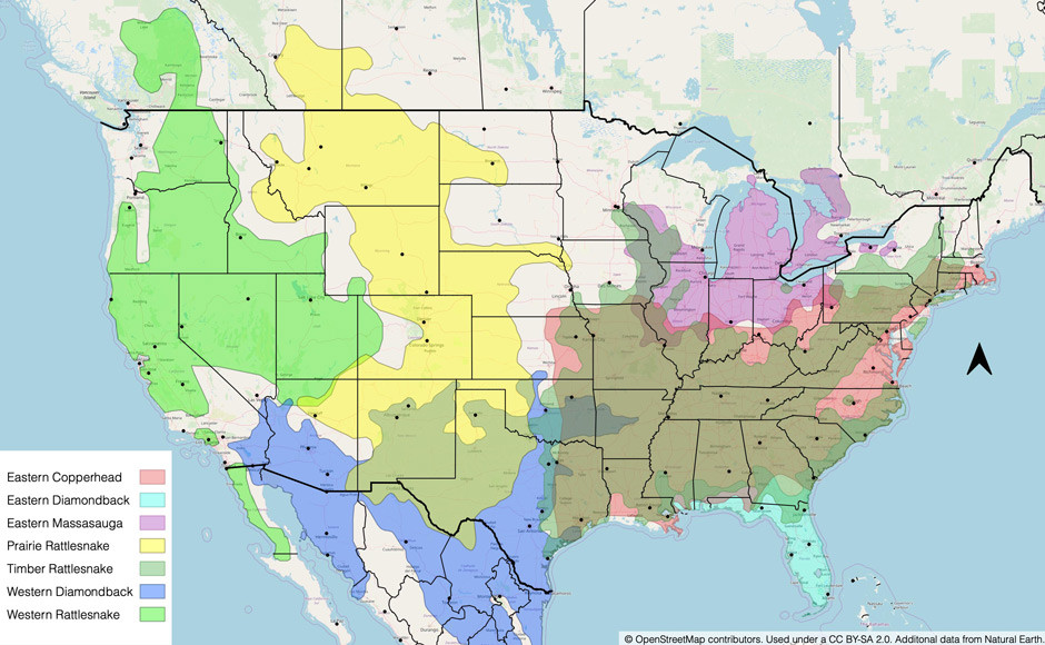 Map of Common Venomous Snakes in North America