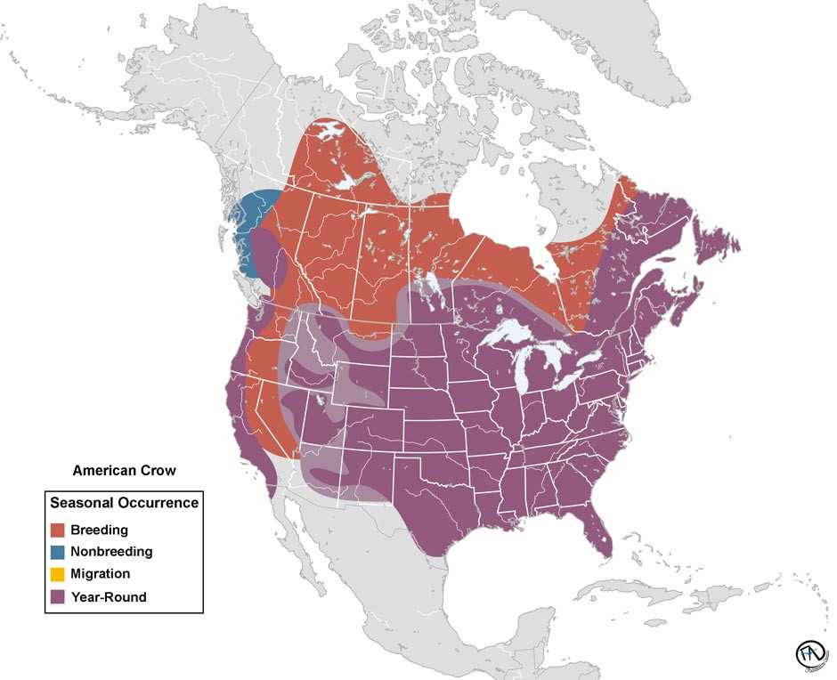 Range Map of the American Crow