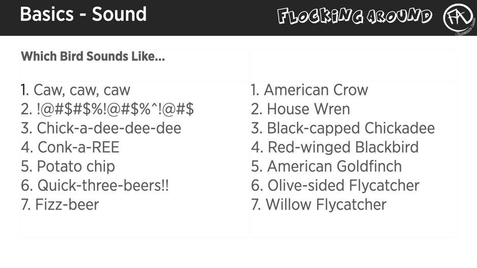 Bird Sound Mnemonics