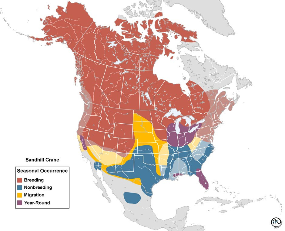 Range Map of the Sandhill Crane