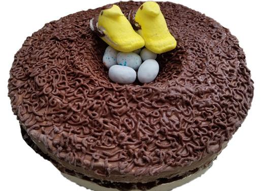 Make a bird-day cake!