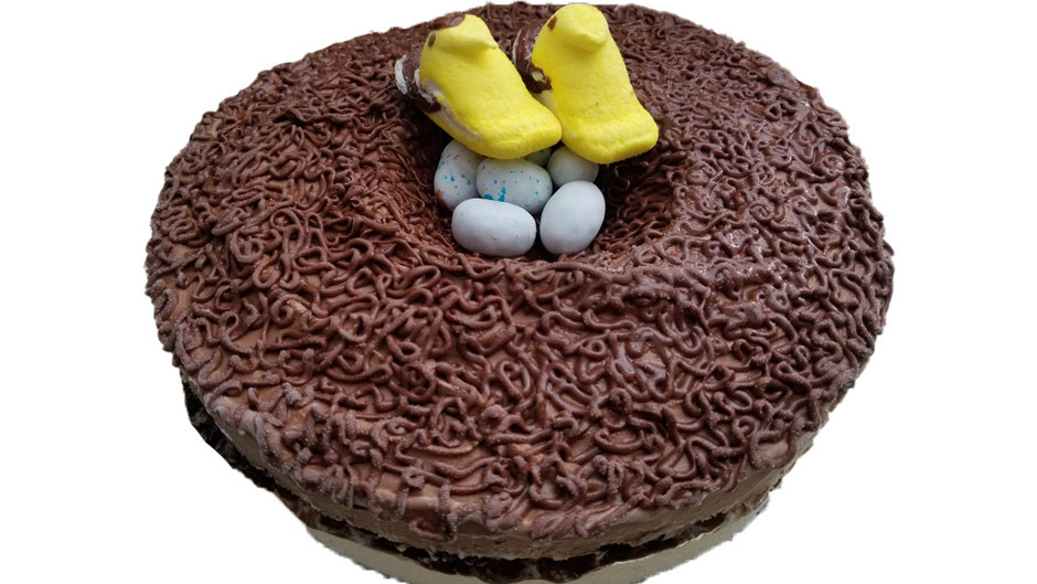 Bird-themed Birthday Ice Cream Cake with 'Goldfinches'