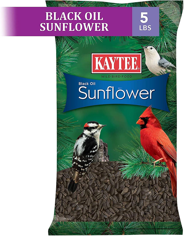 Kaytee Black Oil Sunflower Seeds - 5 lbs