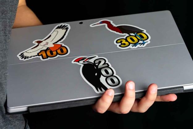 Birding stickers are great for laptops and tablets!