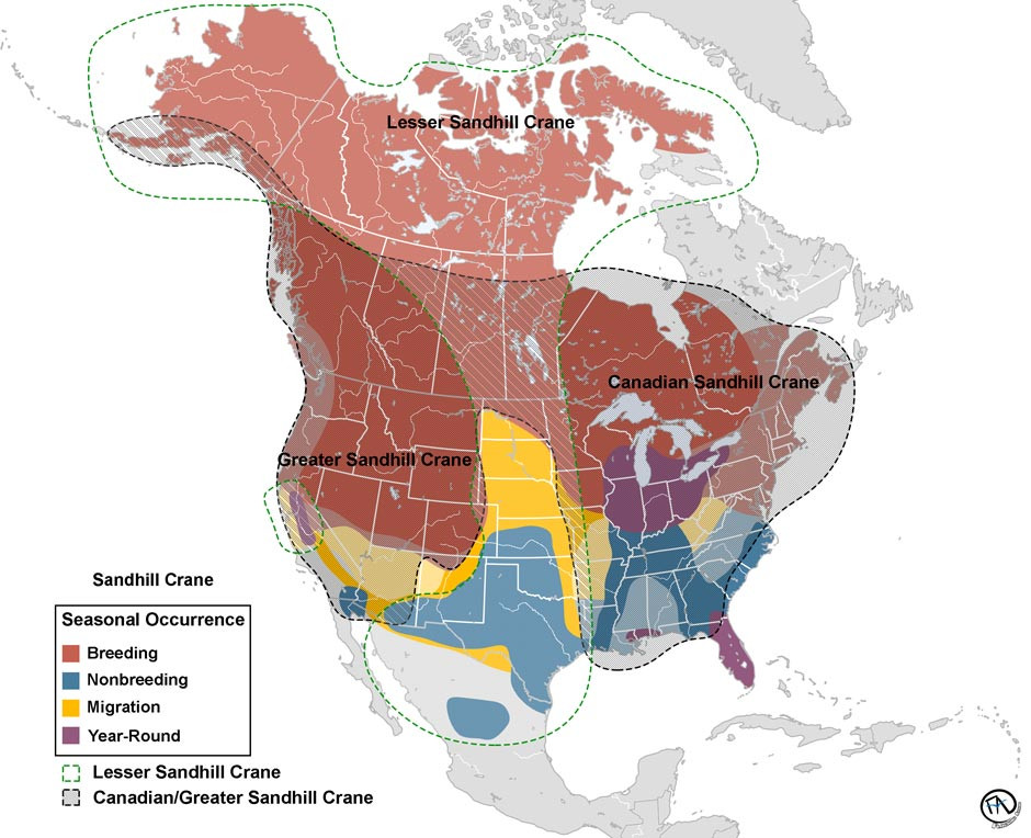 Range Map of the Migratory Sandhill Crane Subspecies