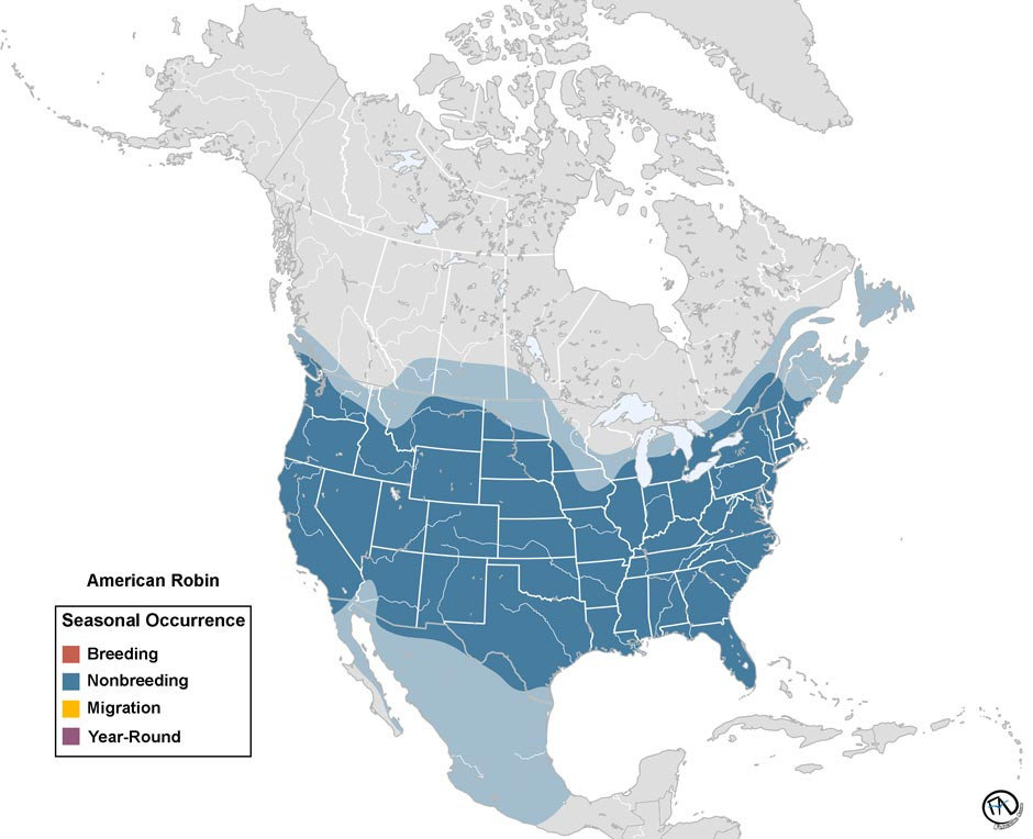 Winter Range of the American Robin