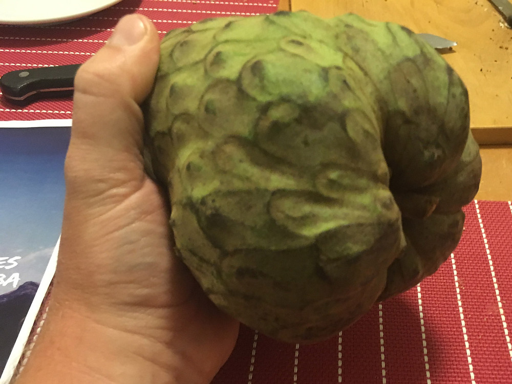Cherimoya - the most delicious fruit in the world