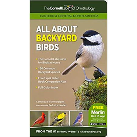 All About Backyard Birds: Eastern & Central North America
