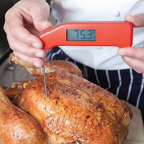 FS413 thermapen-classic-thermometers.jpg