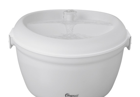 Large capacity with enough water for dogs and multiple cats all day long