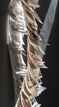 'banned' - detail