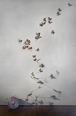 metamorphosis-one configuration
