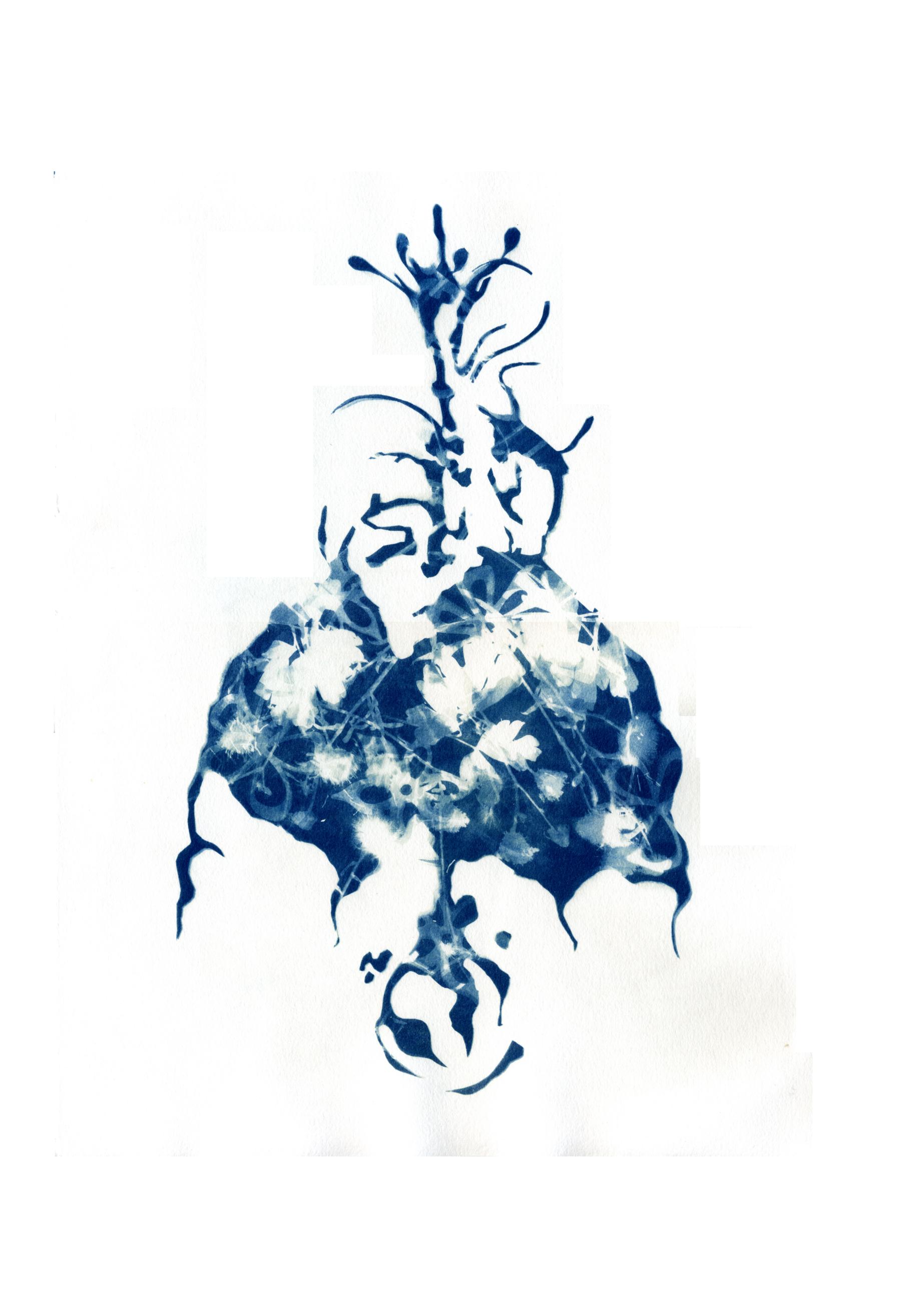 cyanotype doll