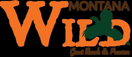 Montana Pheasant Hunting Ranch