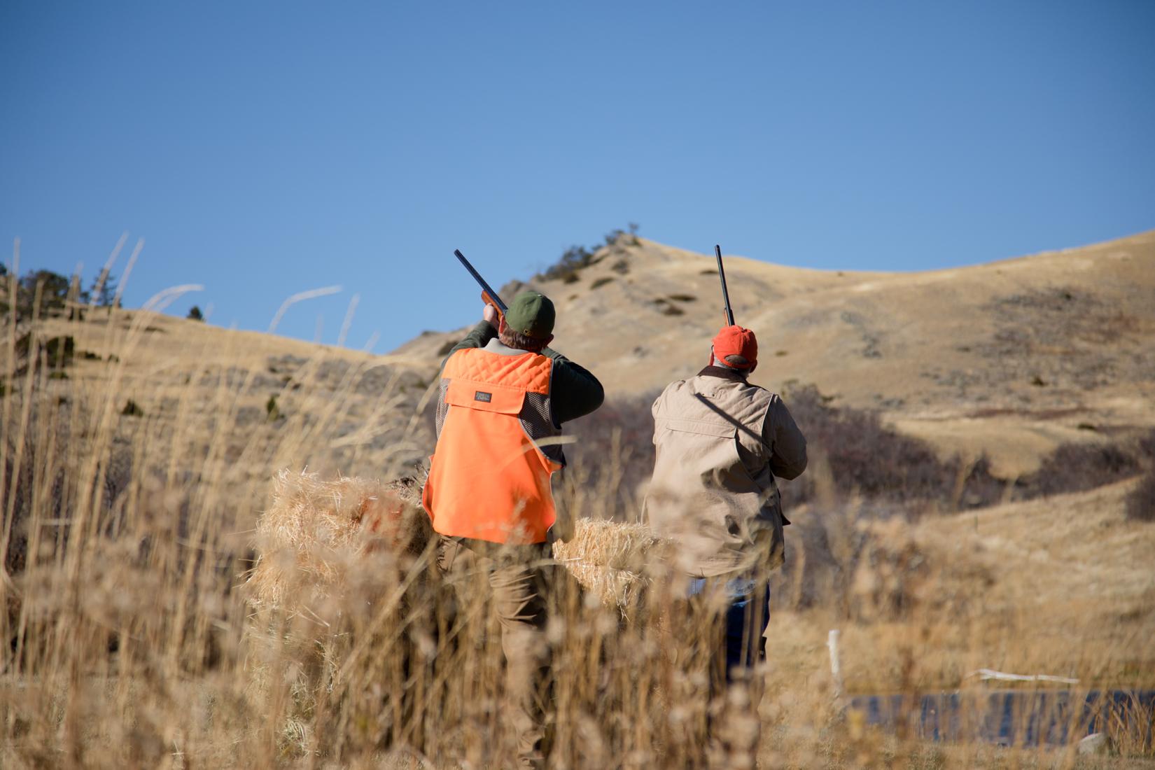 Best place to bird hunt in Montana