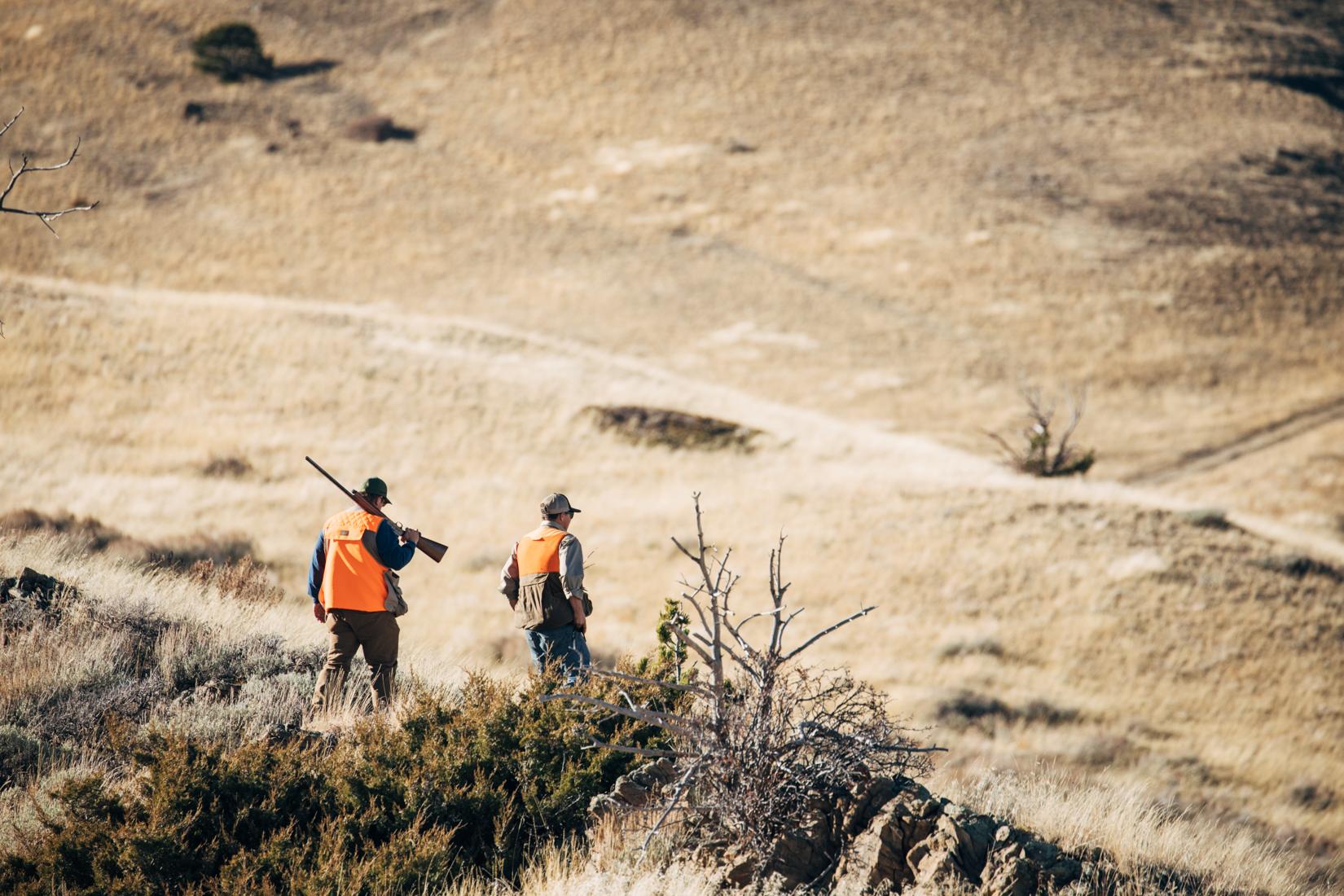 2000 acre pheasant hunt