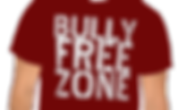 Anti Bully School Program