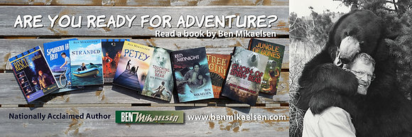 Ben Mikaelsen Bookmarks (Qty less than 200)
