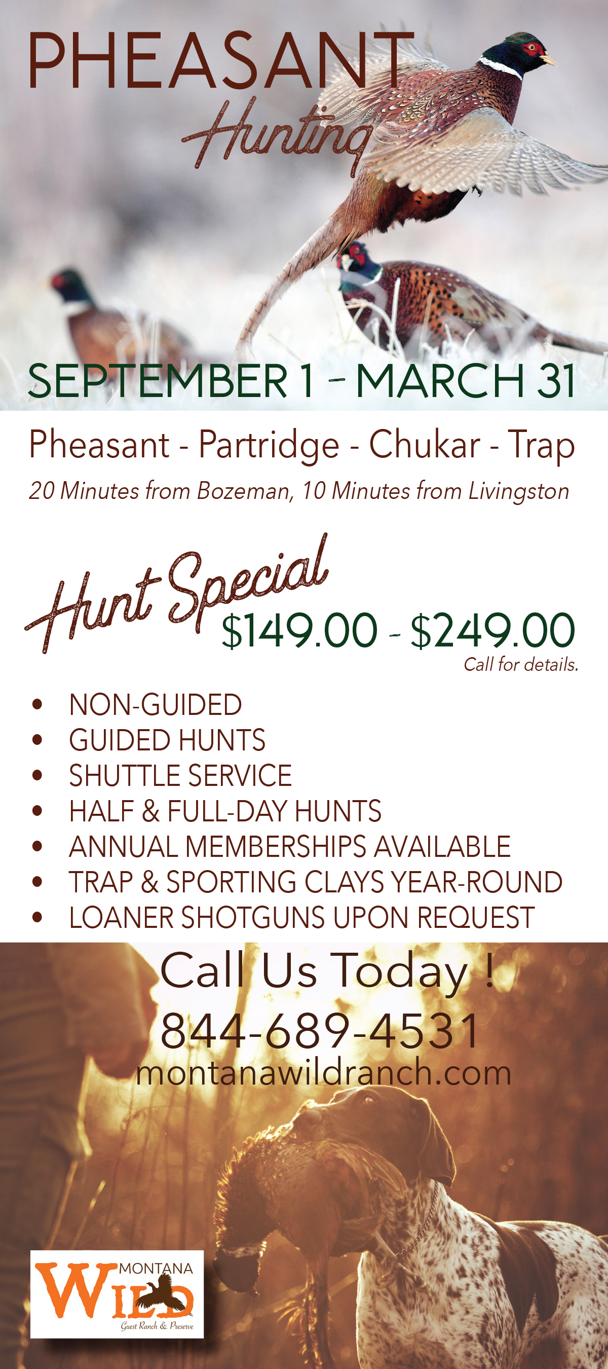 Pheasant Hunt Brochure