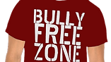 Anti-Bully School Program