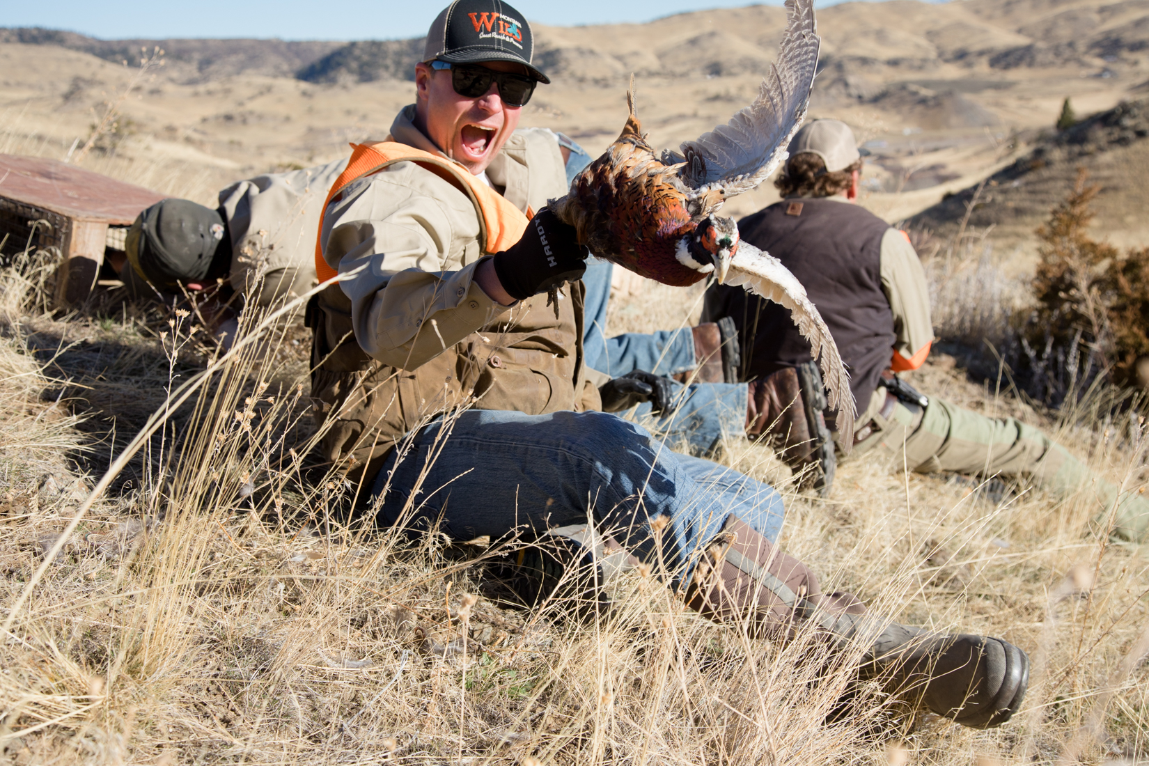 Bird Toss for European Pheasant Hunt